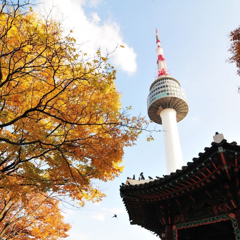 Busan Tower-