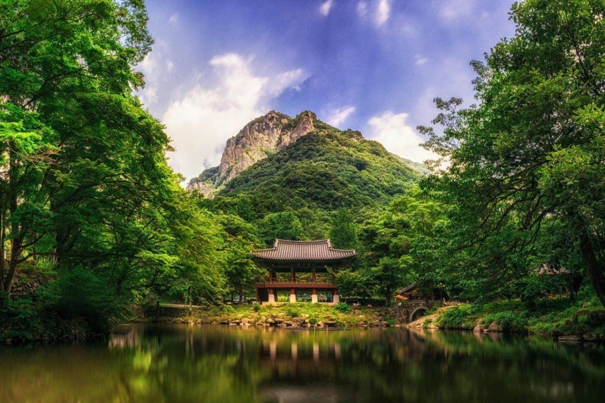 Paket Tour ke Korea Selatan 6 Hari 5 Malam Agustus Musim Panas (Summer) 2018