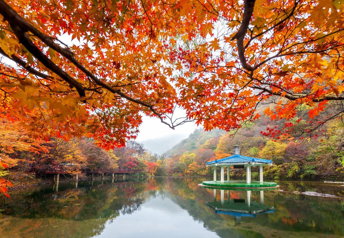 Paket Tour ke Korea Selatan 6 Hari 5 Malam Oktober Musim Gugur (Autumn) 2018