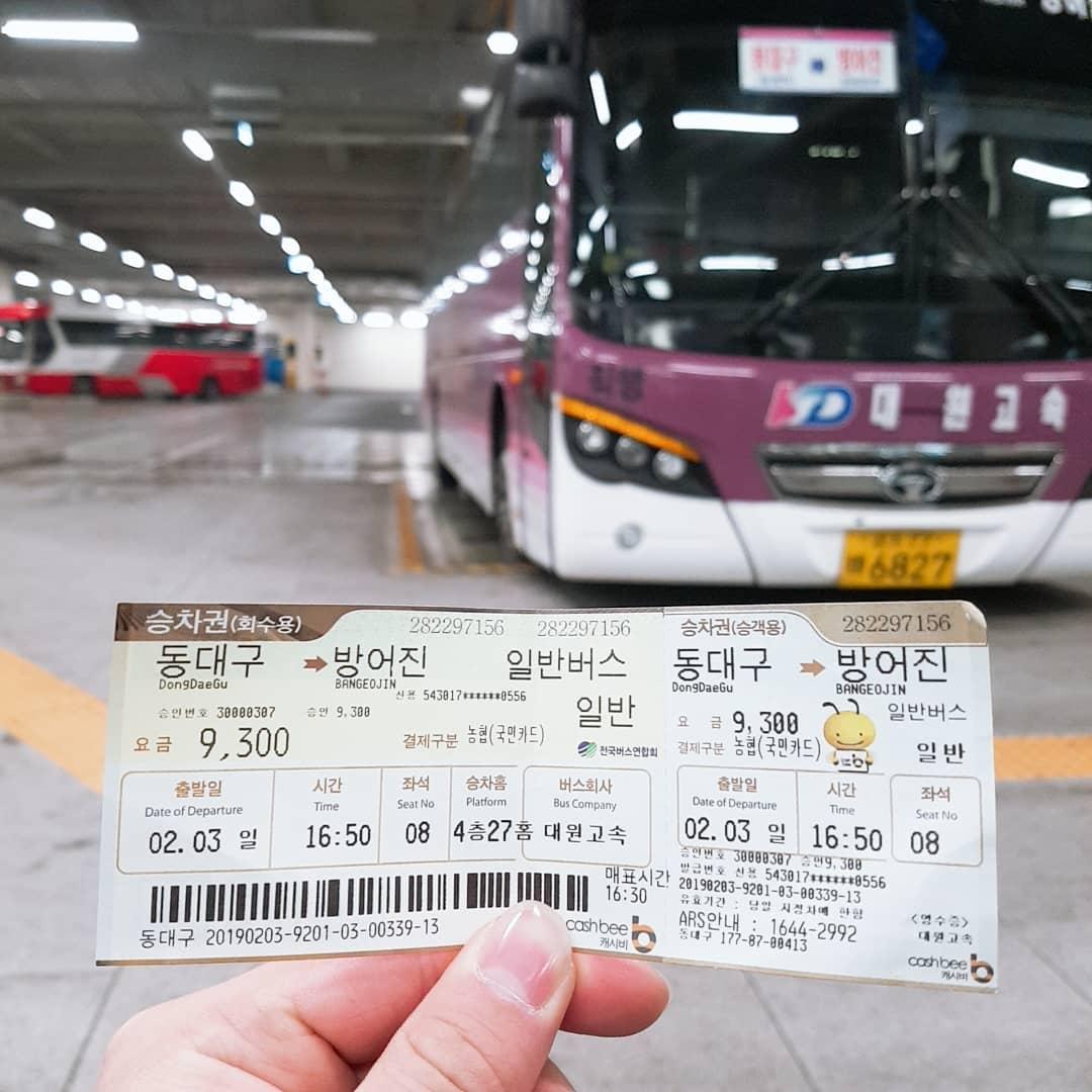 Bus Inter City